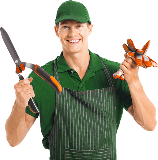 Image Result For Webb Gardening Services