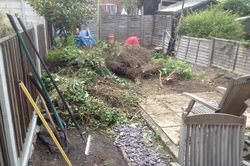 Garden Clearance Experts in Chester